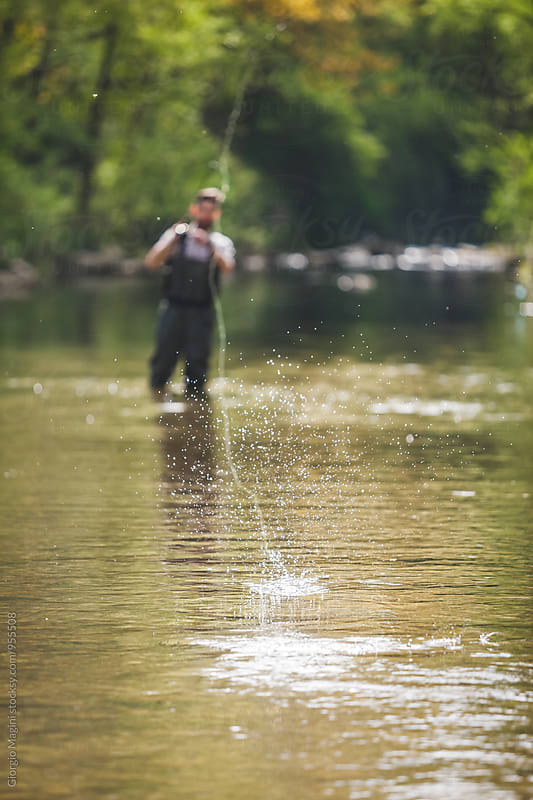 Bait Splashing in Freshwater, Fishing in a River by Giorgio Magini for Stocksy United