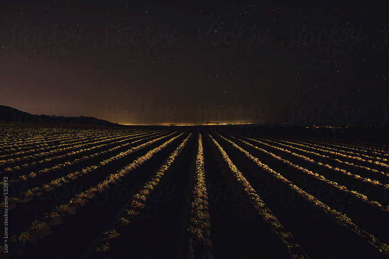 Fields lit at night under bright sky by Lior + Lone for Stocksy United