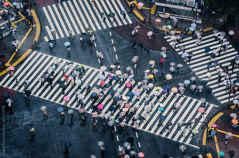 People With Umbrellas At Shibuya Crossing On A Rainy Day by Leslie Taylor for Stocksy United
