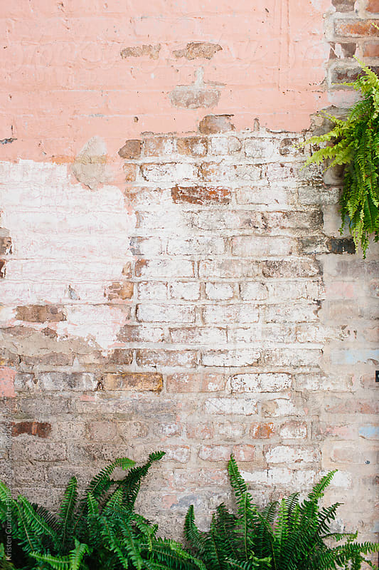 Paint chipped brick textured wall  by Kristen Curette Hines for Stocksy United
