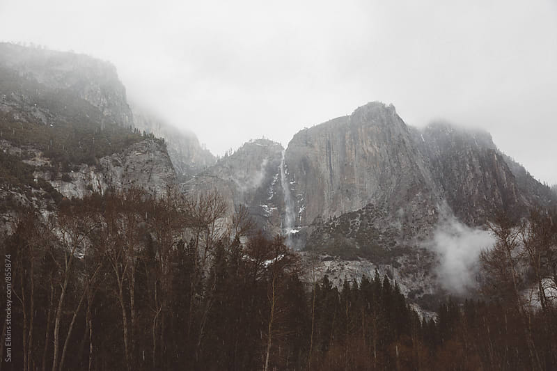 Foggy Yosemite by Sam Elkins for Stocksy United