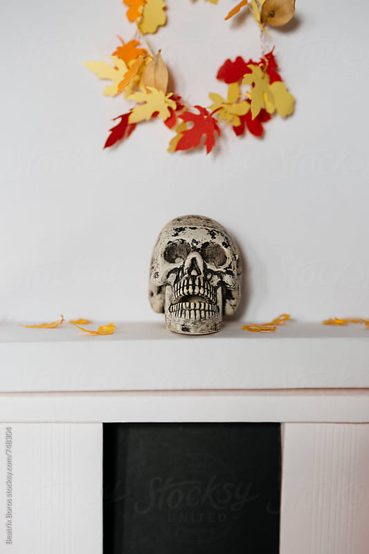 Skull with a handmade paper Fall wreath by Beatrix Boros for Stocksy United