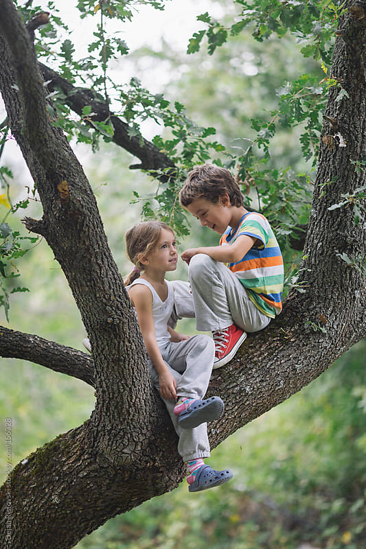 Children on a tree by Dejan Ristovski for Stocksy United