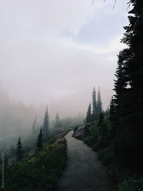 Trail Leading Into Fog by Kevin Russ for Stocksy United