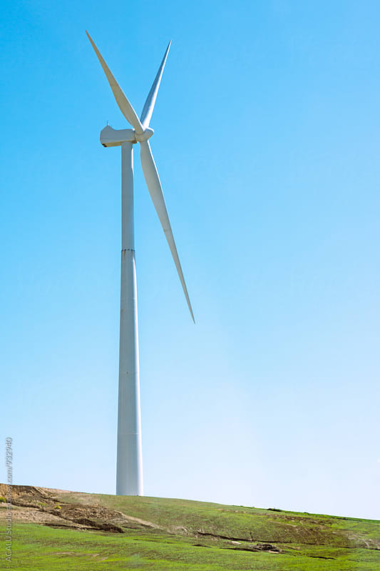 Windmill in the field by ACALU Studio for Stocksy United