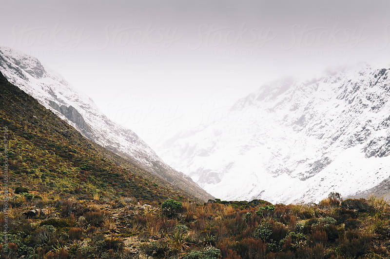 Low cloud and snowy mountains, Otira Valley, New Zealand. by Thomas Pickard for Stocksy United