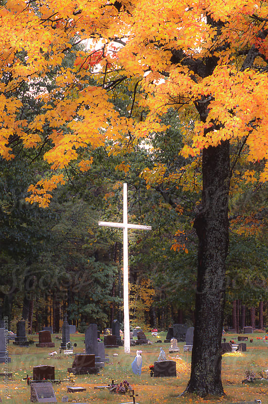 Slight soft focus of a white metal cross in graveyard in autumn, Upper Peninsula of Michiganb by Ron Mellott for Stocksy United