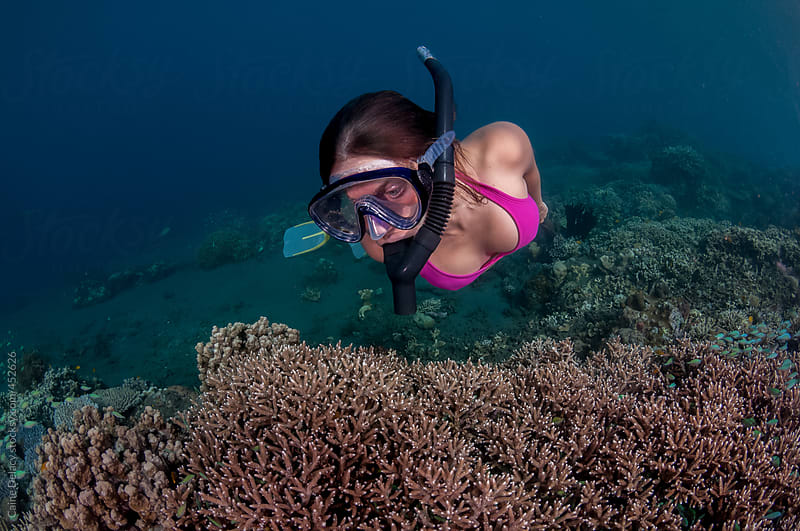Young woman snorkels over coral reef by Caine Delacy for Stocksy United