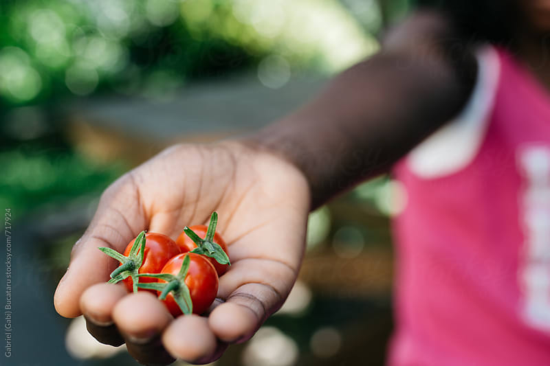 African American girl holding cherry tomatoes by Gabriel (Gabi) Bucataru for Stocksy United