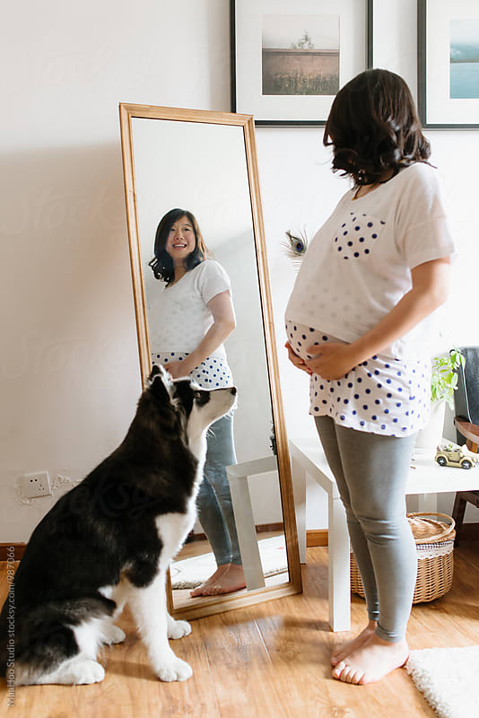 Pregnant young woman looking in the mirror with her Alaskan malamute by Maa Hoo for Stocksy United