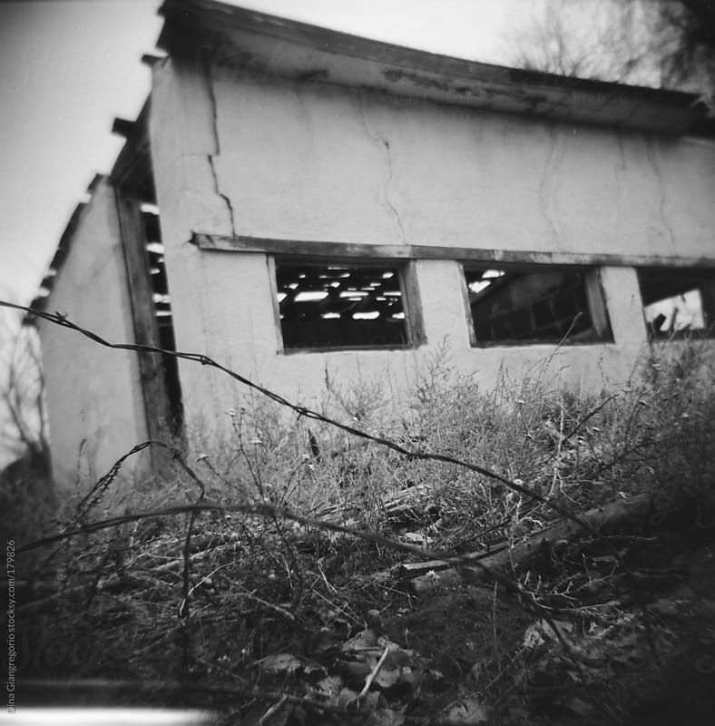 Deserted house showing barbed wire and overgrowth weeds by Dina Giangregorio for Stocksy United