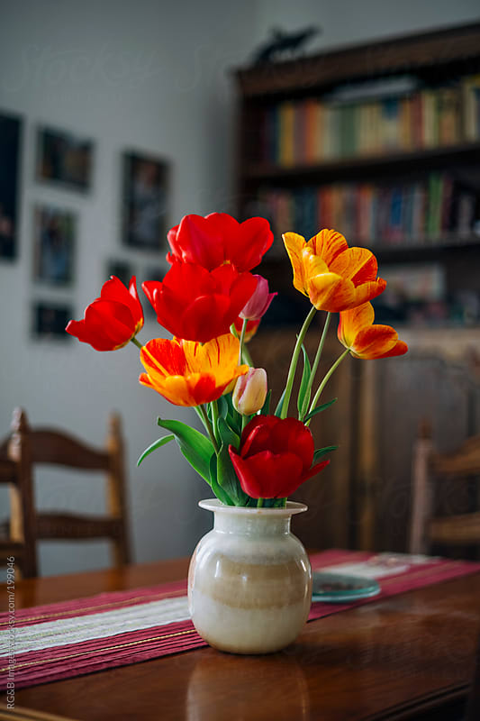 Beautiful tulips in vase  by RG&B Images for Stocksy United