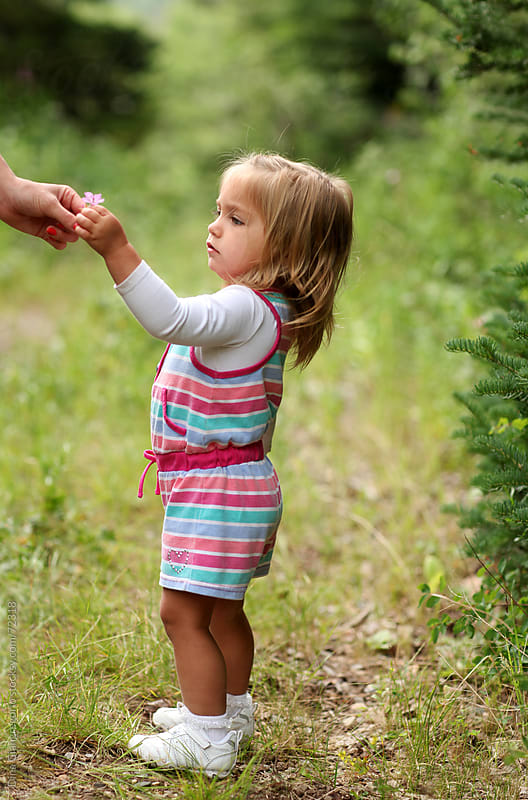 Little girl outdoors being handed a flower by Dina Giangregorio for Stocksy United