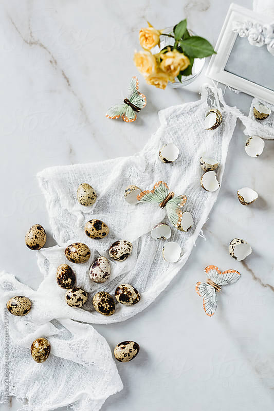 Quail eggs, butterflies and flower by Tatjana Ristanic for Stocksy United