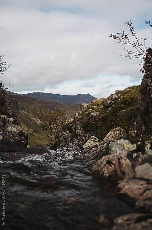 Mountain Stream by Neil Warburton for Stocksy United