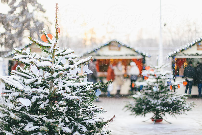 Close-up of snowed Christmas tree outdoors by Andrey Pavlov for Stocksy United