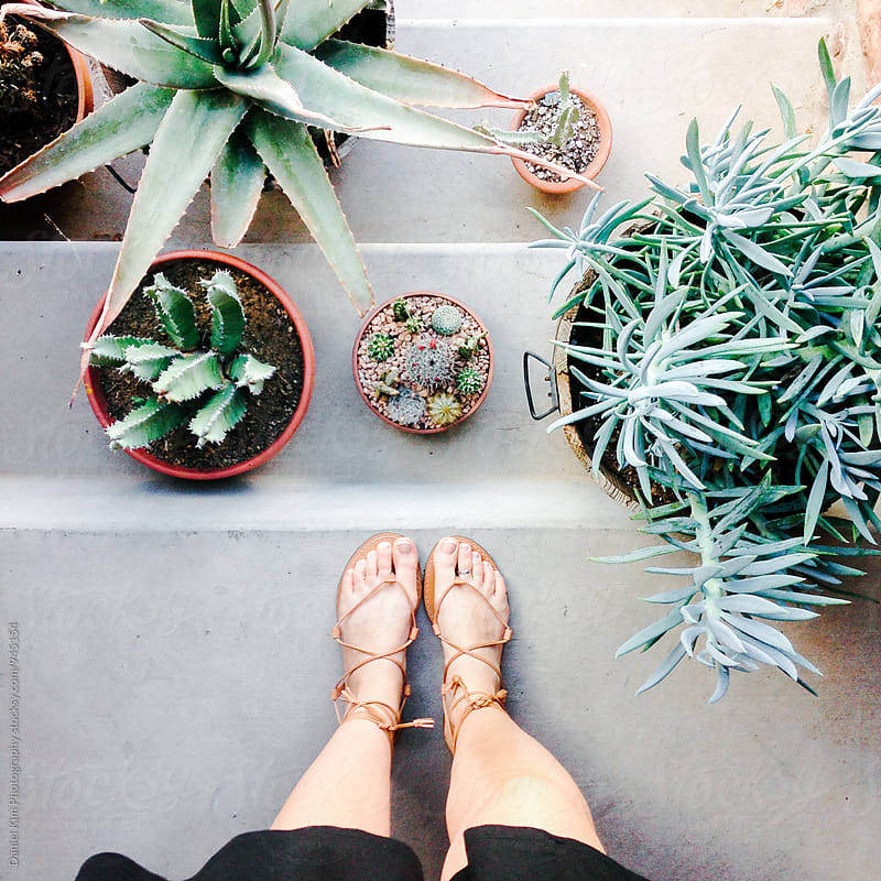 Looking down at feet and plants by Daniel Kim Photography for Stocksy United