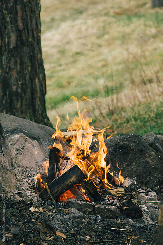 Campfire in the wood surrounded by stones by Borislav Zhuykov for Stocksy United