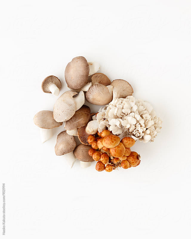 variety of mushrooms on white background by Naoko Kakuta for Stocksy United