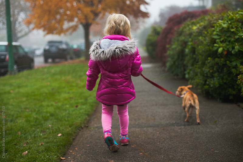 A little blonde girl takes her small dog for a walk. by Cherish Bryck for Stocksy United