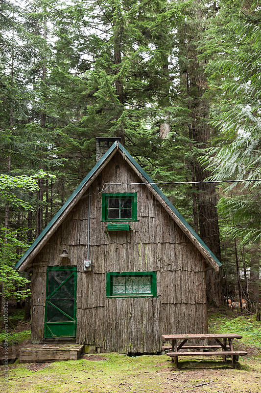 Old Cabin In The Woods by Carey Haider for Stocksy United