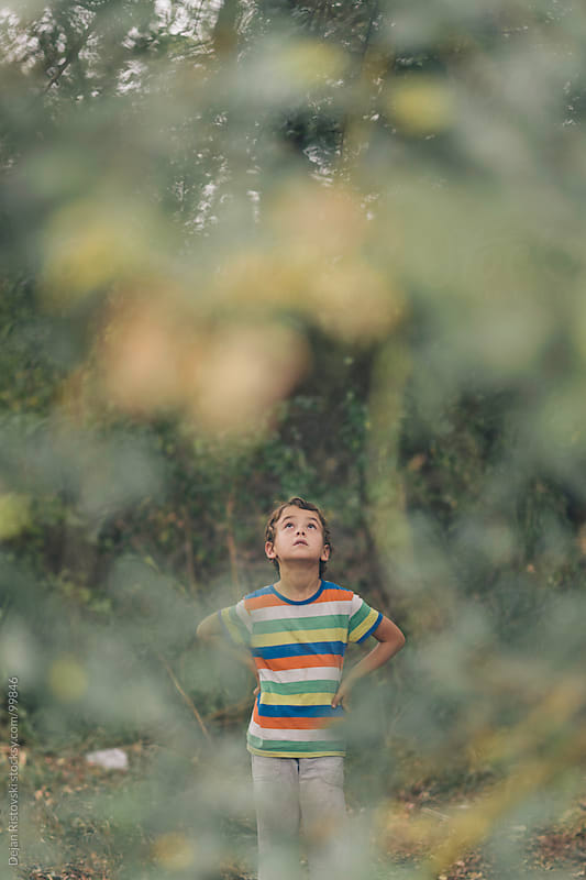Curious boy looking in to the trees by Dejan Ristovski for Stocksy United