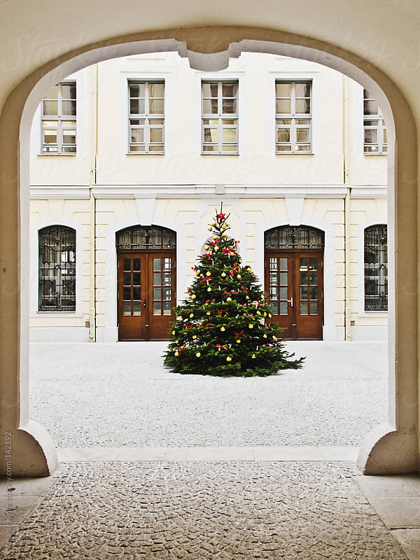 Christmas tree in a court yard by Melanie Kintz for Stocksy United