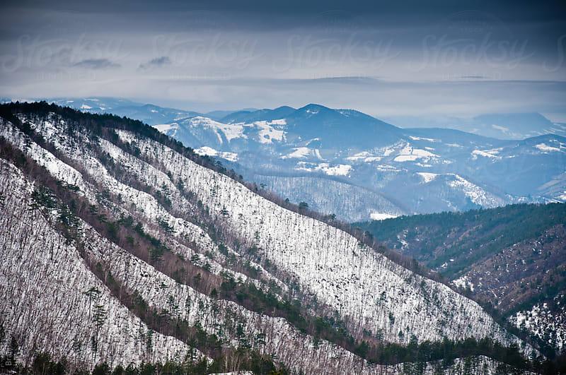 Mountain view by Branislav Jovanović for Stocksy United