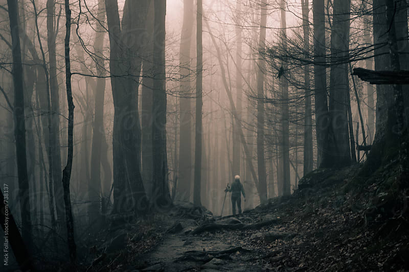 Moody light in the forest with hiker by Mick Follari for Stocksy United