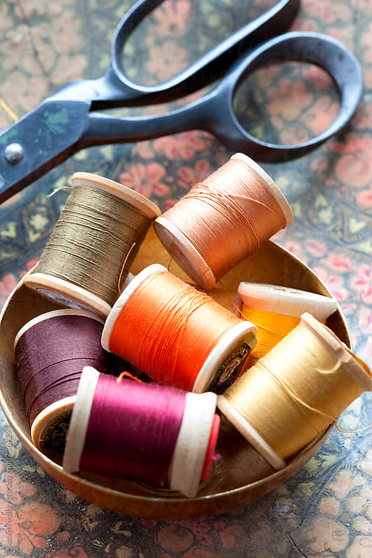 thread by Susan Findlay for Stocksy United