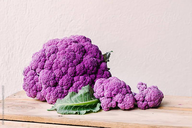 purple cauliflower by Gillian Vann for Stocksy United