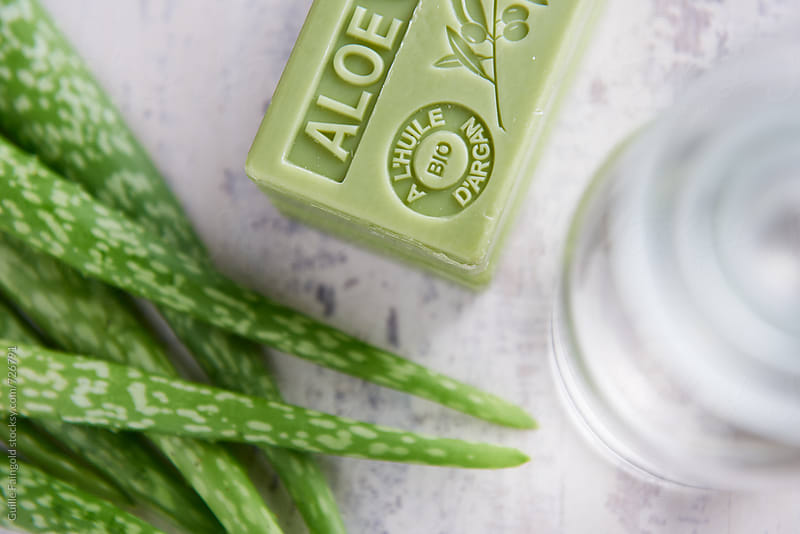 aloe vera bar soap with argan oil. by Guille Faingold for Stocksy United
