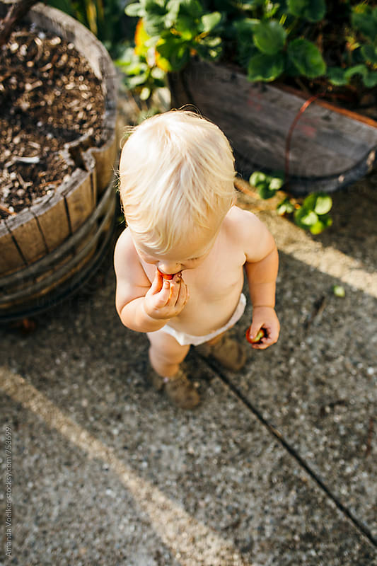 Birds Eye View of a Toddler Boy Eating Strawberries by Amanda Voelker for Stocksy United
