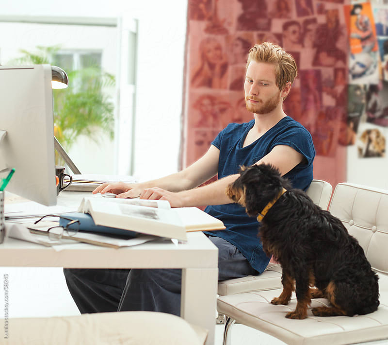 College Student Studying With His Dog by Lumina for Stocksy United