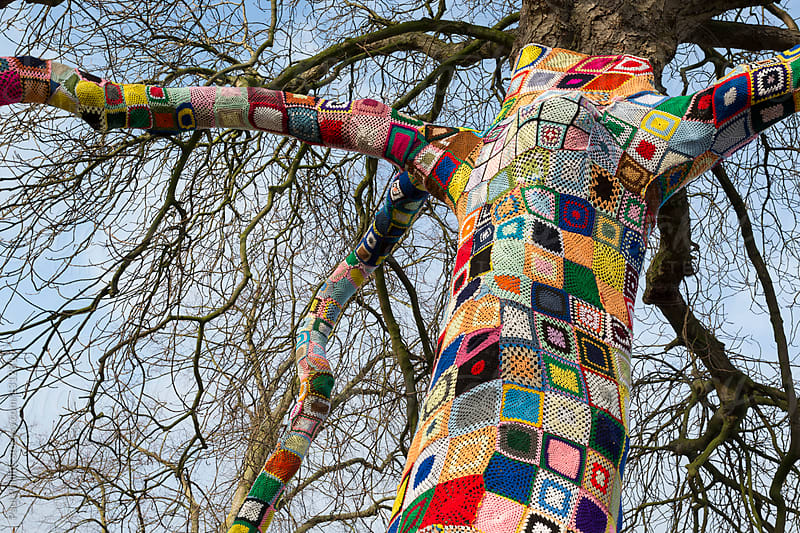 Top of a Yarn bombed tree. Tree covered with knitted wool yarn. by Paul Phillips for Stocksy United
