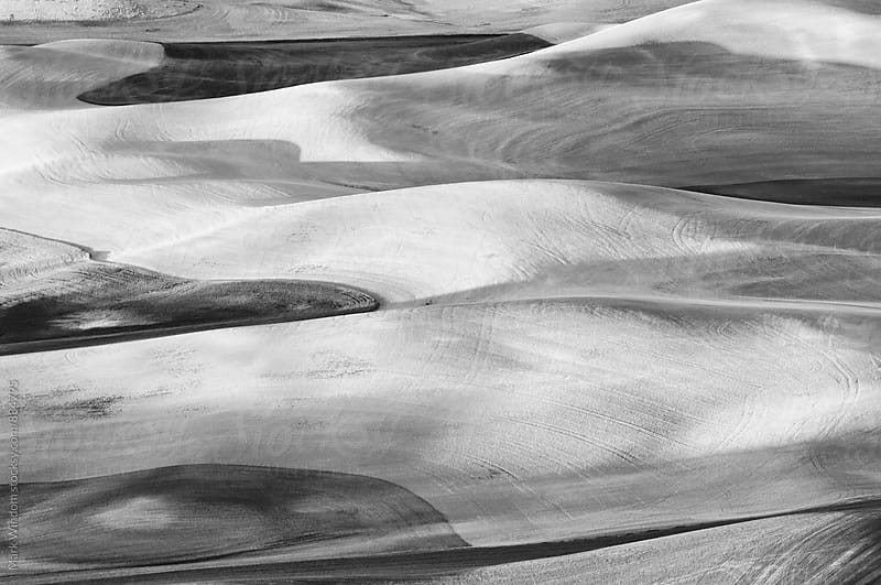 Rolling hills of farmland in black and white by Mark Windom for Stocksy United