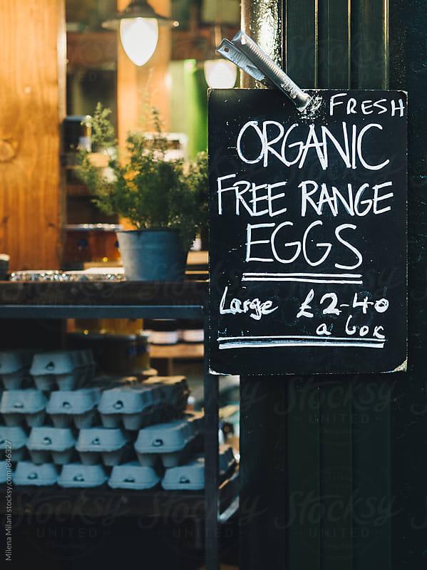 Free range eggs by Milena Milani for Stocksy United