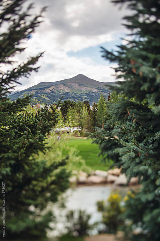 View through spruce to Peak 8 Breckenridge Colorado in summer by Angela Lumsden for Stocksy United