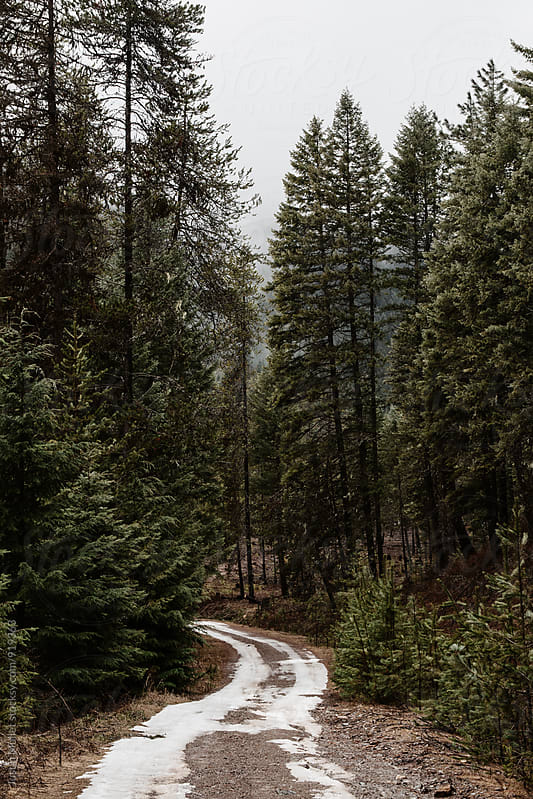 Downhill road with snow melting off on a rainy day.  by Justin Mullet for Stocksy United