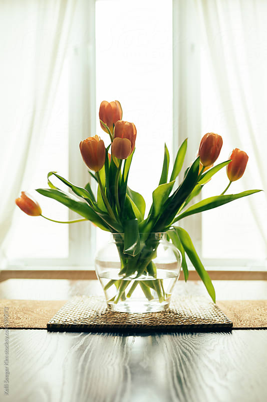 Bouquet of orange tulips, backlit by window by kelli kim for Stocksy United