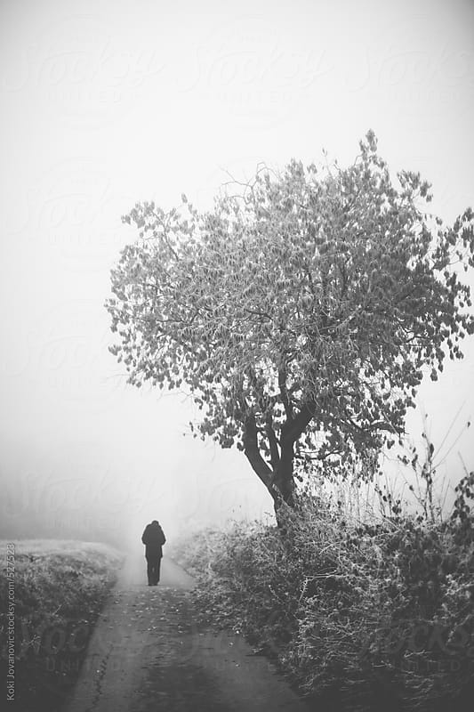 man walking in a beautiful still scene clouded in by fog, mist and snow by Koki Jovanovic for Stocksy United