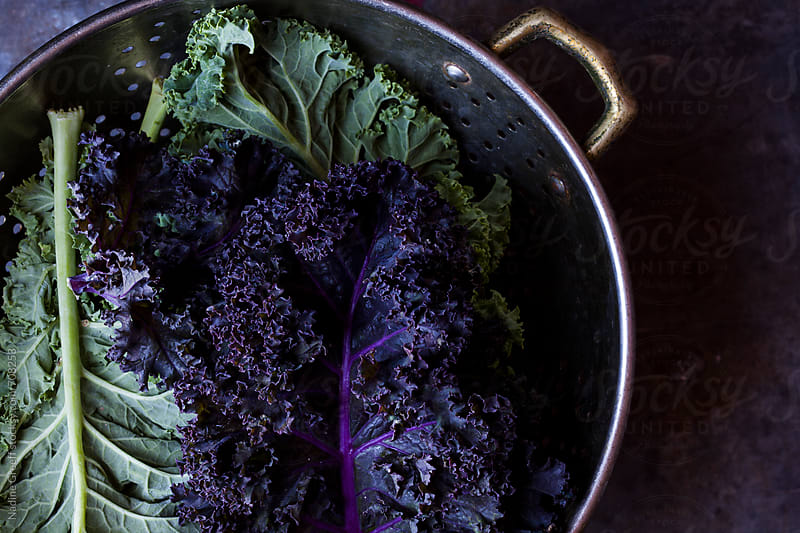 Healthy vegetable ingredient kale by Nadine Greeff for Stocksy United