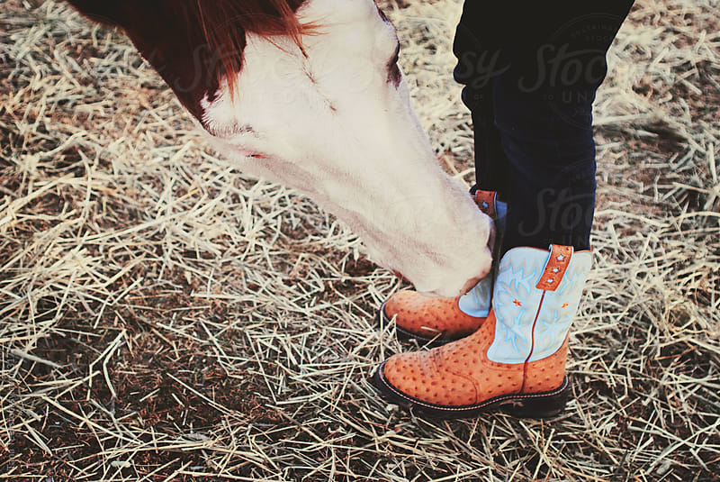 Horse sniffing his riders boots in a rural pasture by Tana Teel for Stocksy United