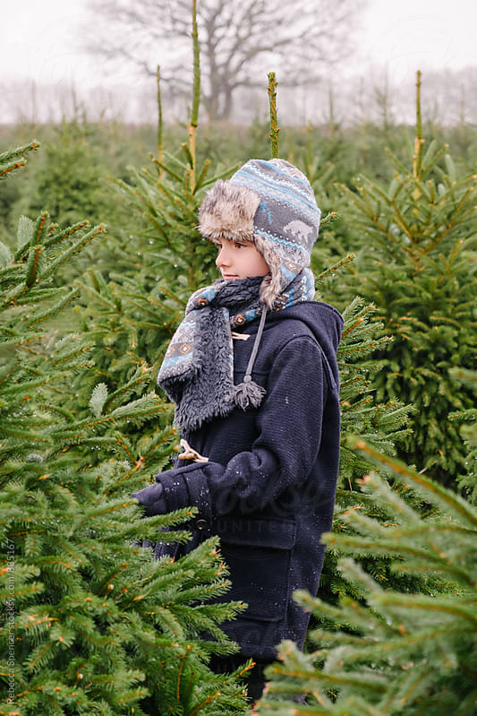 Choosing a Christmas tree on a winters day by Rebecca Spencer for Stocksy United