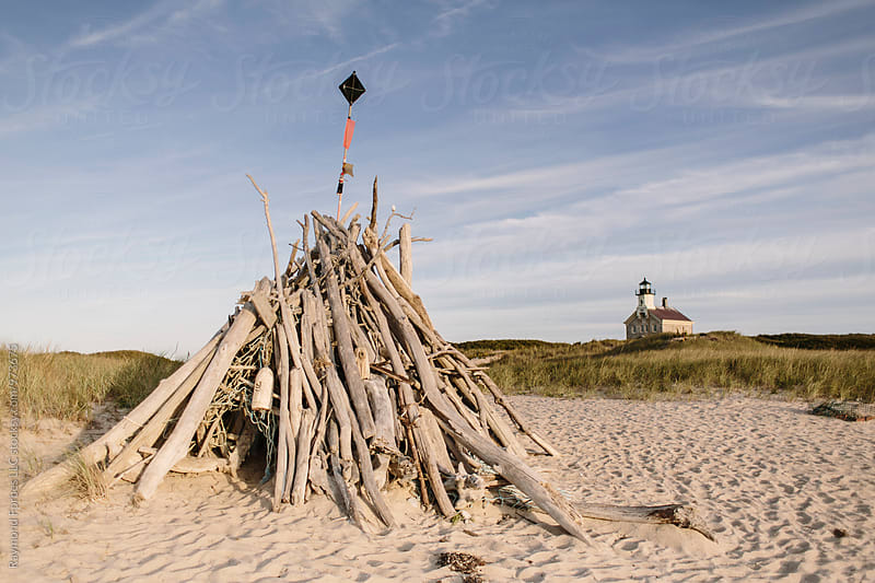 Block Island Driftwood by Raymond Forbes LLC for Stocksy United