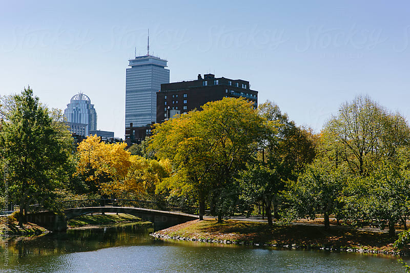 Boston Back Bay in Autumn by Raymond Forbes LLC for Stocksy United