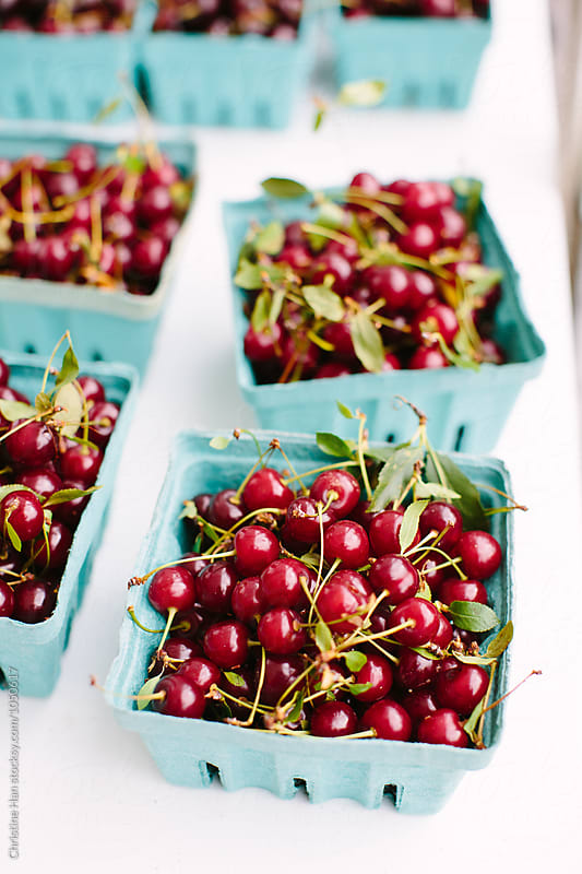 sour cherries by Christine Han for Stocksy United