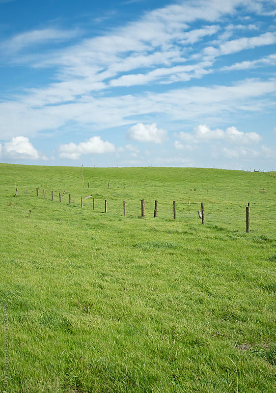Fence in a field of green by Lucas Saugen for Stocksy United