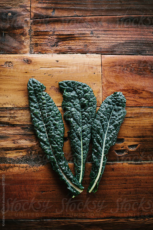 Fresh Green Kale by Kristine Weilert for Stocksy United