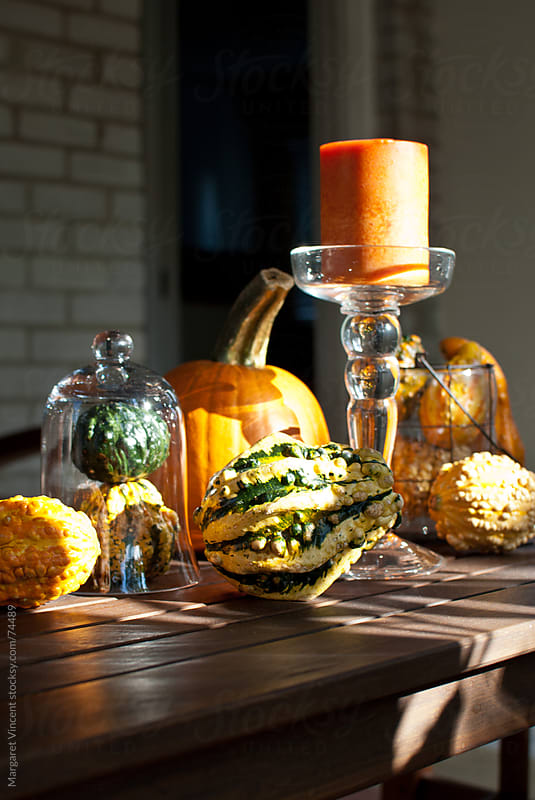 an autumn tablescape features gourds by Margaret Vincent for Stocksy United